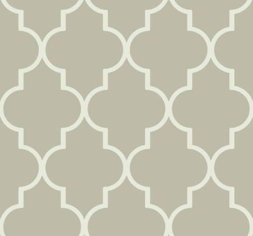 Marokańska koniczyna