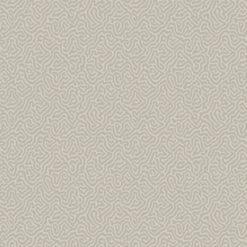 Tapeta Cole & Son Curio 107/4019 Vermicelli