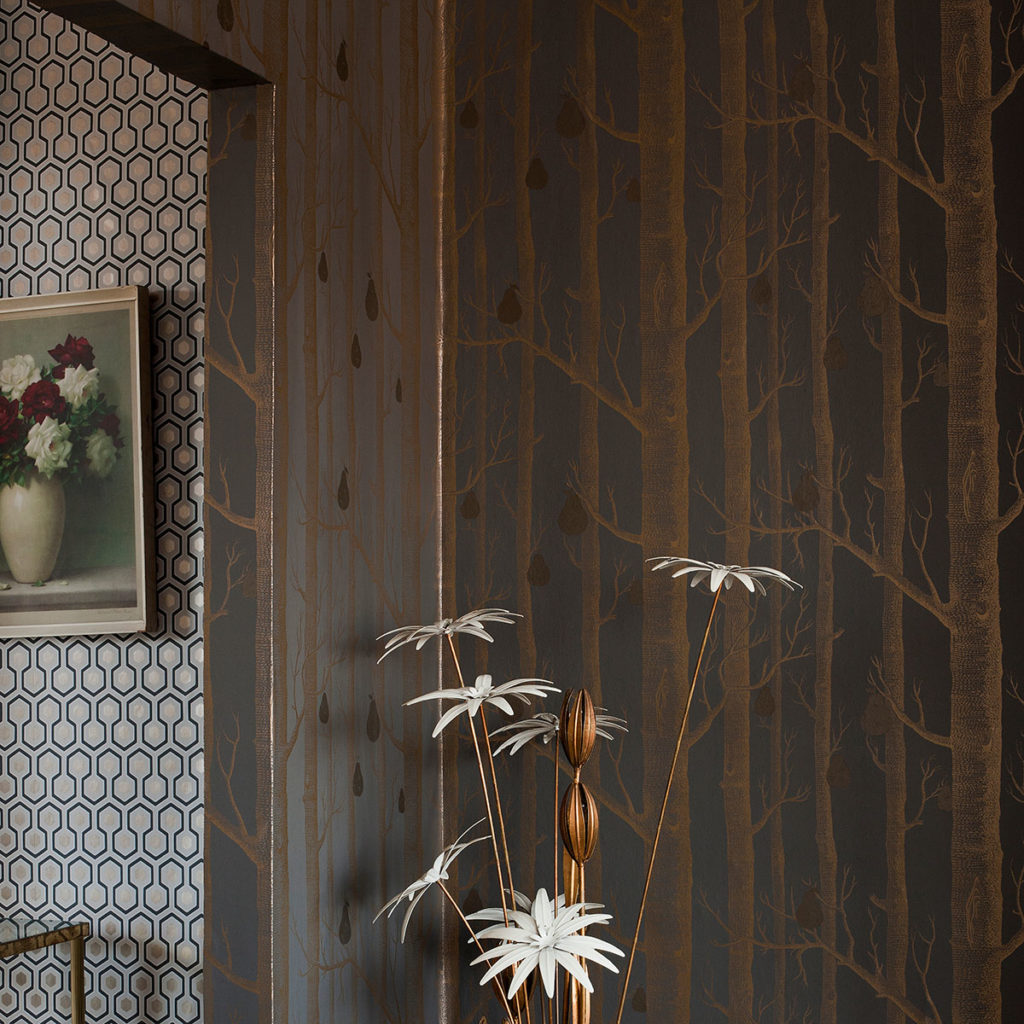 Tapeta Cole&Son Contemporary Restyled