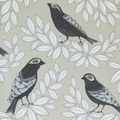 Tapeta Songbird Pebble