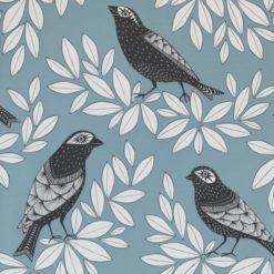 Tapeta Songbird Blue Jay