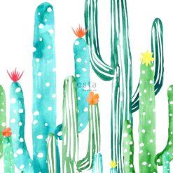 Fototapeta Esta Home Greenhouse 143-158829