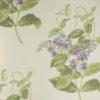 Tapeta Cole & Son Archive Anthology 100/12056 Madras Violet