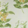 Tapeta Cole & Son Archive Anthology 100/12059 Madras Violet