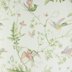 Tapeta Cole & Son Archive Anthology 100/14067 Hummingbirds