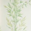 Tapeta Cole & Son Archive Anthology 100/5023 Bamboo