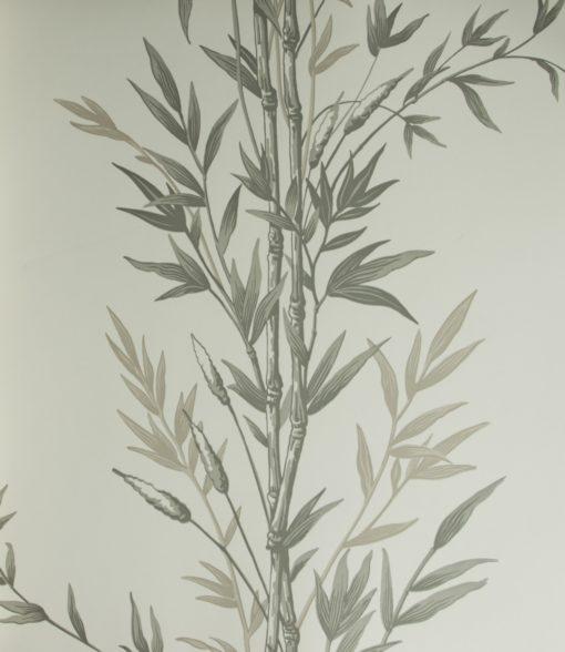 Tapeta Cole & Son Archive Anthology 100/5025 Bamboo