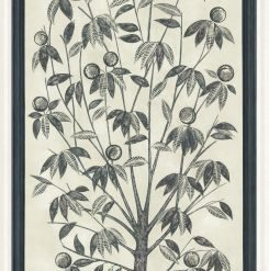 Fototapeta Cole & Son Martyn Lawrence Bullard Trees of Eden LIFE 113/14043