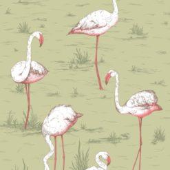 Tapeta Cole and Son Icons Flamingos 112/10038
