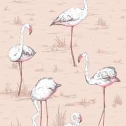 Tapeta Cole and Son Icons Flamingos 112/10039