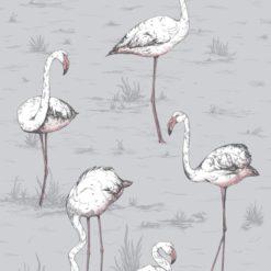 Tapeta Cole and Son Icons Flamingos 112/10040