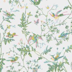 Tapeta Cole and Son Icons Hummingbirds 112/4015