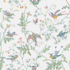Tapeta Cole and Son Icons Hummingbirds 112/4016