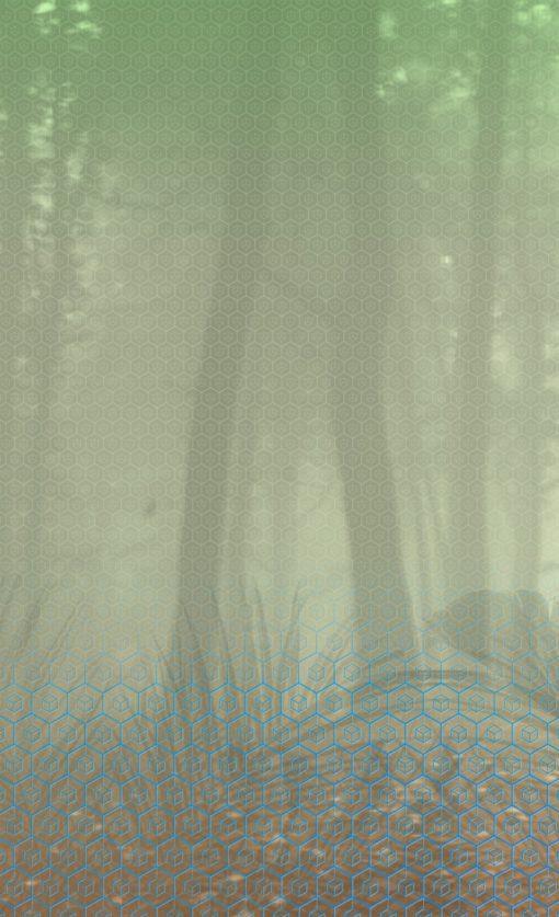 Fototapeta BN Wallcoverings Dimensions 220283