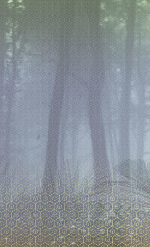 Fototapeta BN Wallcoverings Dimensions 220285