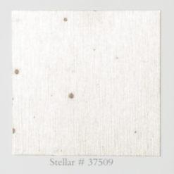 Tapeta Arte Metal X Signum 37509 Stellar