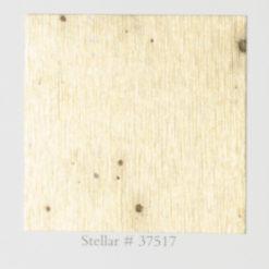 Tapeta Arte Metal X Signum 37517 Stellar