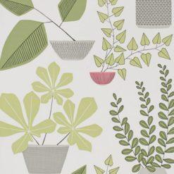 Tapeta House Plants Olive